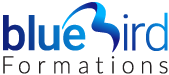 Blue Bird Formations Logo
